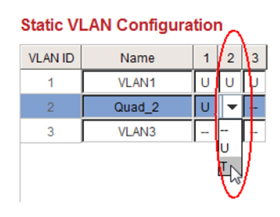 Static VLAN Configuration